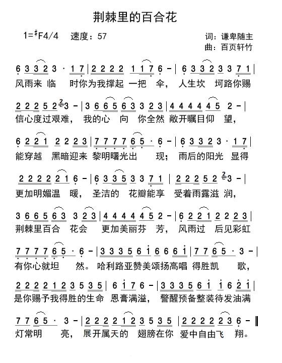 《荆棘里的百合花 简谱》